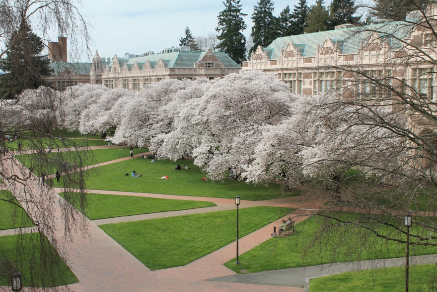 thesis requirements university of washington The length of time required to complete the dissertation varies greatly but total requirements for the phd degree washington state university search.